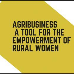 agribusiness_-_a_tool_for_the_empowerment_of_rural_women_1.jpg